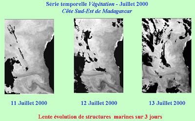 Evolution des structures marines